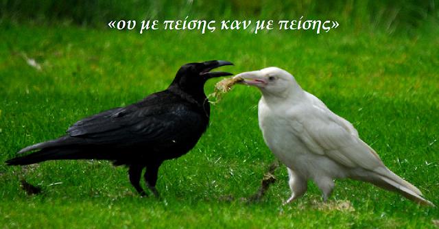 Καλό πιπίλισμα πουλί
