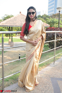 Angana Roy in Silk Saree at Teaching Tree Carnival .xyz 018.JPG