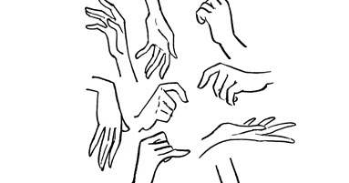 Female Hand Reference   Asdela