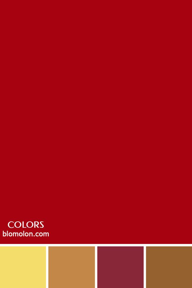 paletas_de_colores_personalizados_color_0