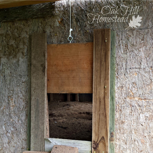 Chicken coop's sliding pop door