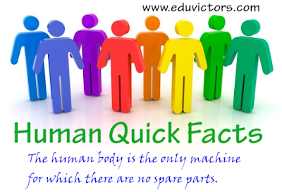 Amazing Human Body - Quick Facts (#humanbody)(#eduvictors)