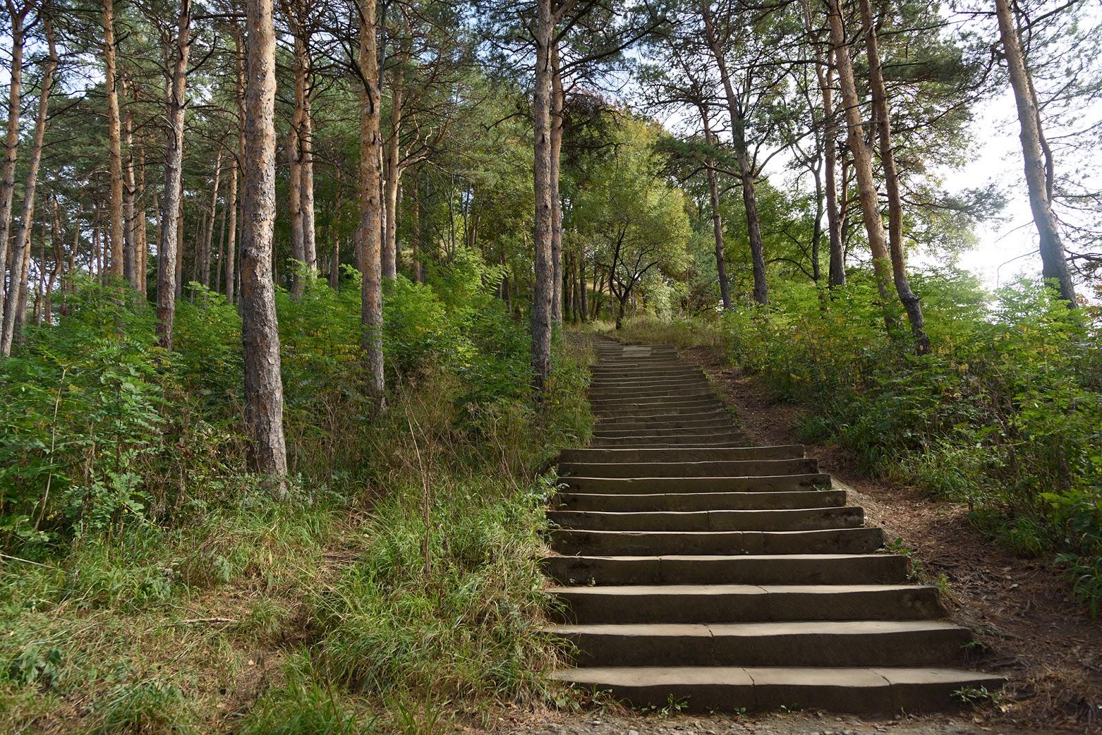 Природный парк. Кисловодск