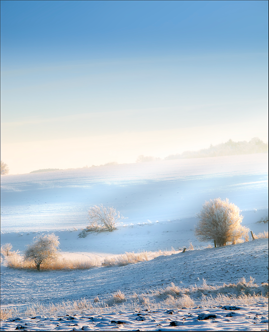01-Dawn-Winter-Wind-Matt-Story-Serenity-in-Hyper-Realistic-Paintings-www-designstack-co