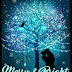 Book Reviewed: Merry & Bright: A Christmas Anthology (Nocturne Falls Universe)