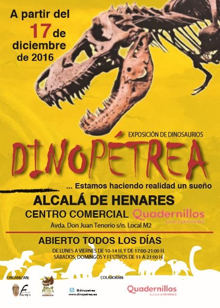 Ampa csb madrid dinop trea for Autoescuela colonia jardin