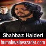 http://www.humaliwalayazadar.com/2016/10/shahbaz-haideri-nohay-2017.html