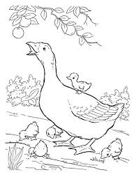 Cute Goose and Goslings Coloring Sheet For Free
