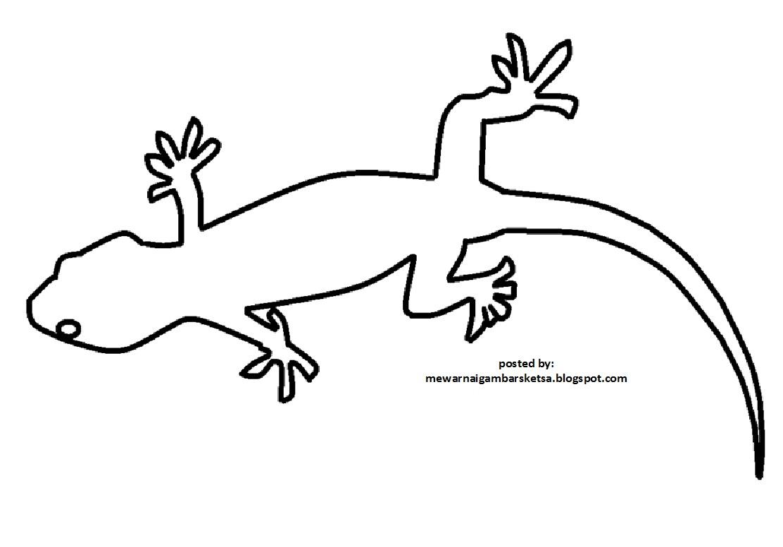 Mewarnai Gambar Binatang Komodo Wwwtollebildcom