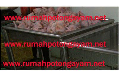 bak peniris air pada daging ayam