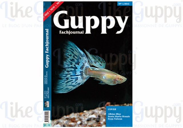 International-Guppy-Fachjournal-N-1-2013