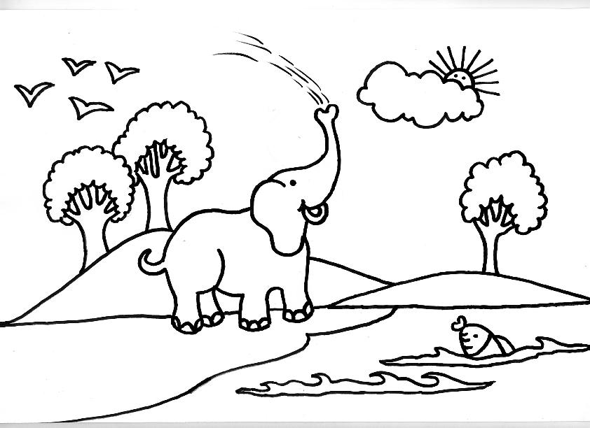 Dibujo Elefante Para Colorear E Imprimir: Desenhos Para Colorir De Elefantes