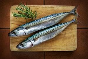 Ikan Laut yang Boleh Dikonsumsi Pengidap Asam Urat