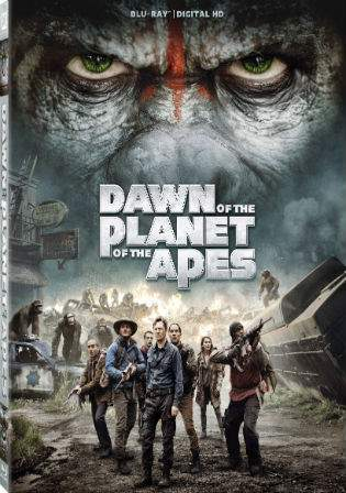 Dawn Of The Planet Of The Apes 2014 BRRip 999MB Hindi Dual Audio 720p Watch Online Full Movie Download bolly4u