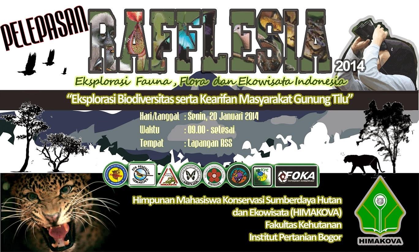 http://4.bp.blogspot.com/-C1HOq73yNkQ/Utus4uvbKaI/AAAAAAAAArw/E09yrpTWfWE/s1600/Pelepasan+Rafflesia+1.jpg