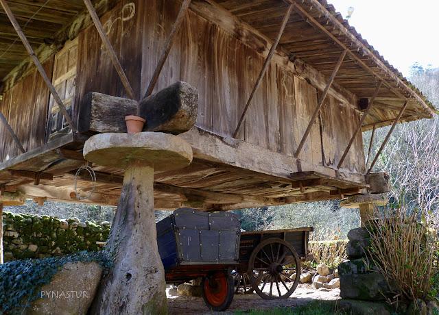 Hórreo en Espinaredo (Espinareu) - Pioña - Asturias