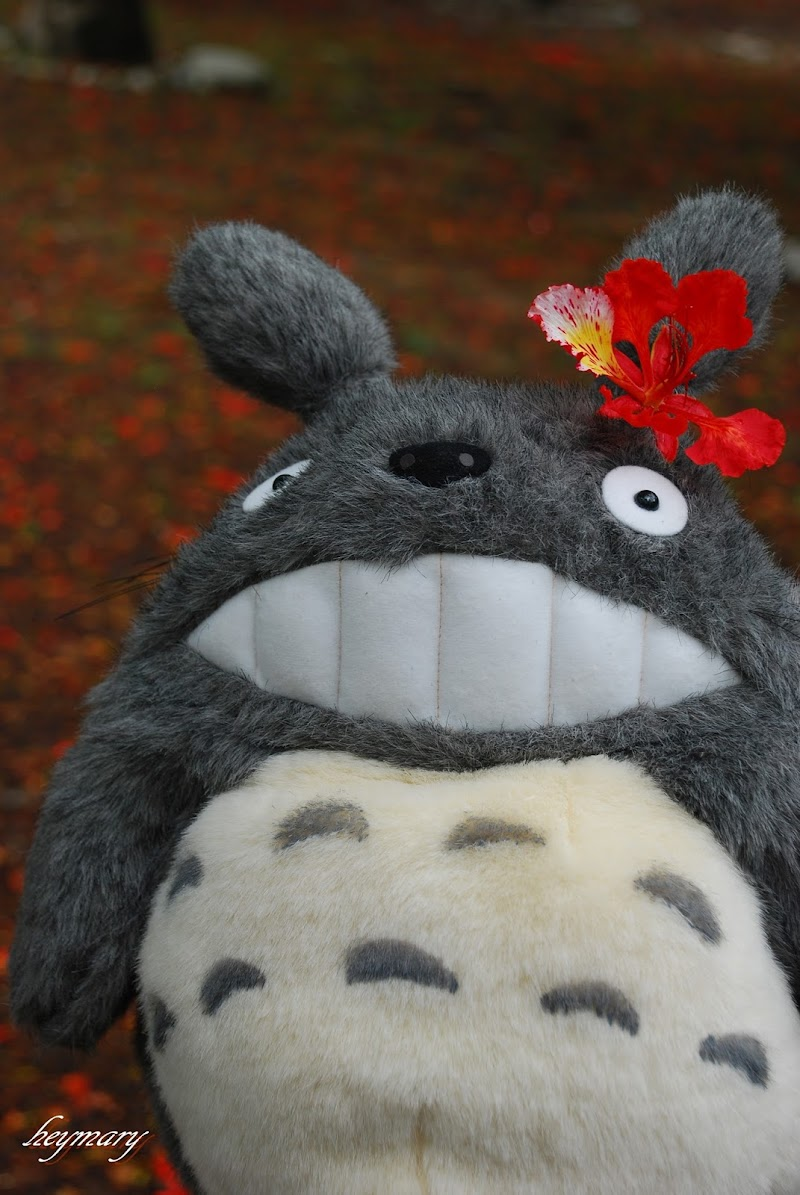 台中親子賞荷景點 東勢林業文化園區 國際木雕藝術~森活藝術