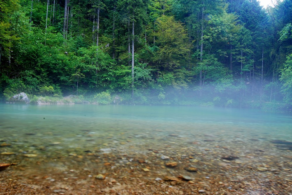 source de la Kamniska bistrica