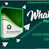 Whatsapp Massal Kirim 400 Pesan Whatsapp dalam 1 Menit