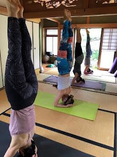 Yoga studio Malaの画像