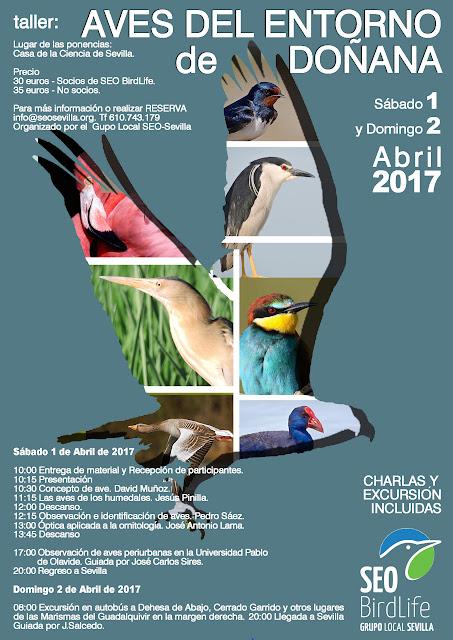Taller: Aves del entorno de Doñana 2017. Grupo Local SEO-Sevilla.