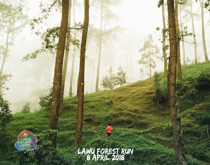 Lawu Forest Run Route 2018