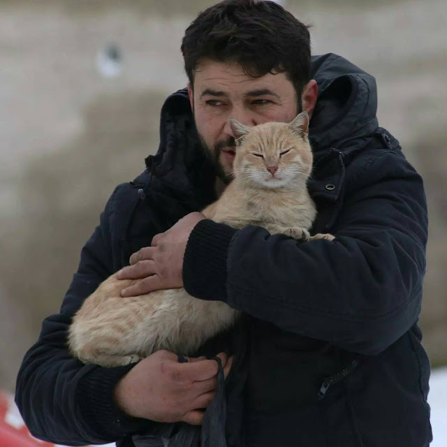 Mohammad Alaa Aljaleel and The Cat Man of Aleppo