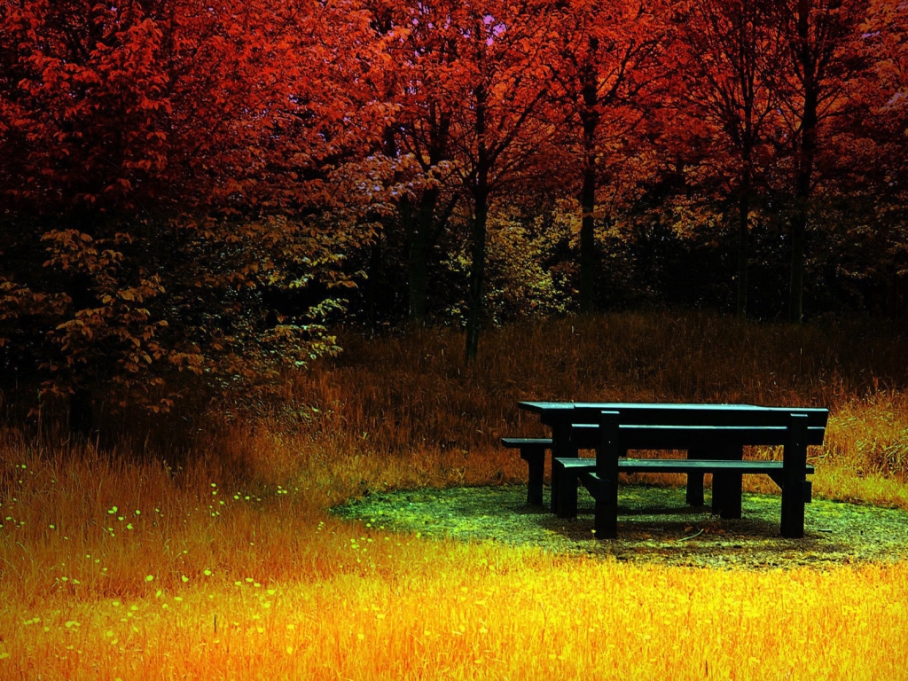 Autumn Season Standard Resolution HD Wallpaper 24
