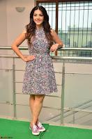 Actress Mehreen Kaur Latest 2017 Po Stills12 ~  Exclusive Celebrities Galleries.jpg