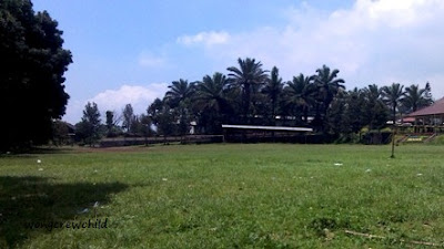 fasilitas wisata kebun teh wonosari malang