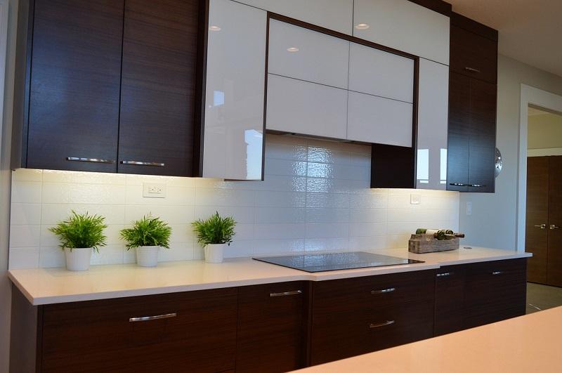 Custom Cabinet for Kitchen