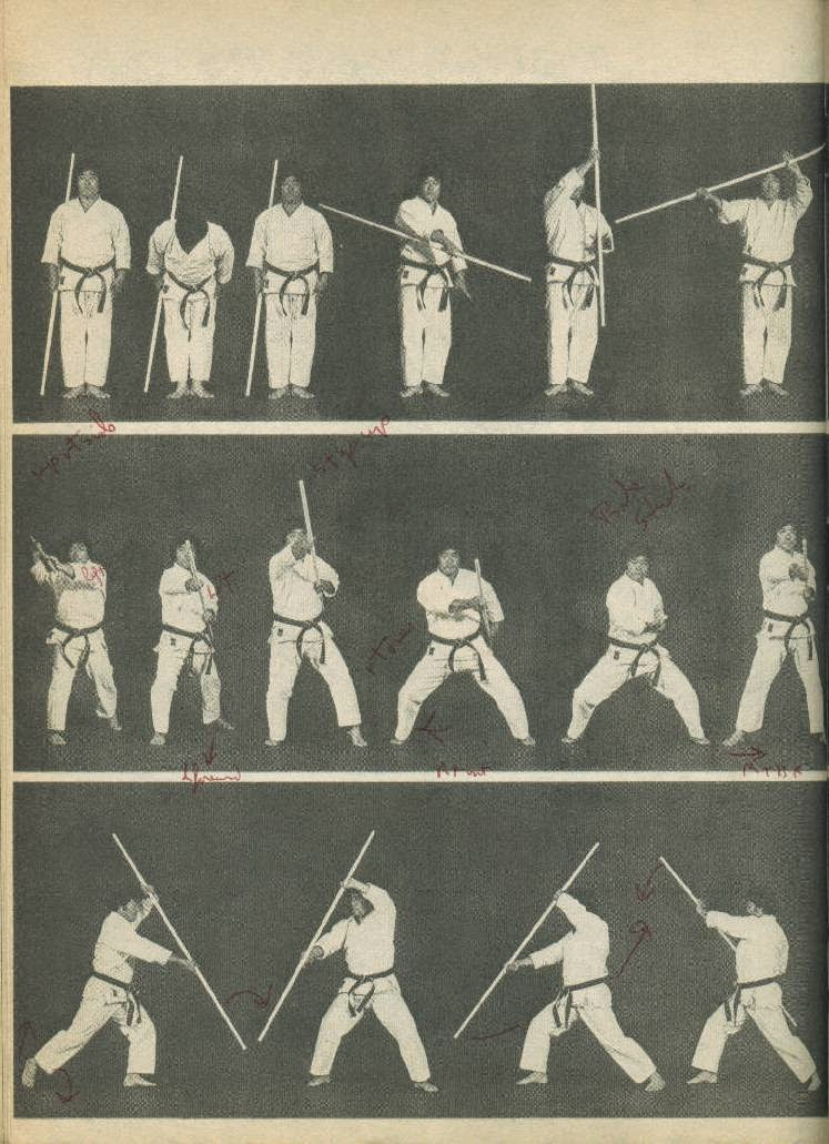 The Walking Dead and those Aikido techniques