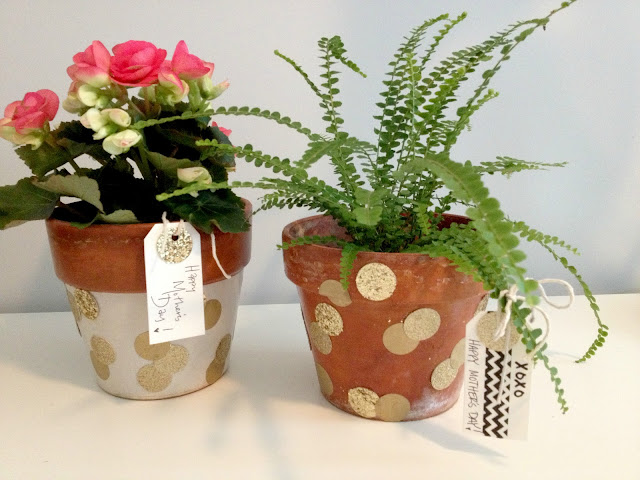 DIY Confetti Terra Cotta Inspired Pots & Tags. How cute & easy! Such a great gift!