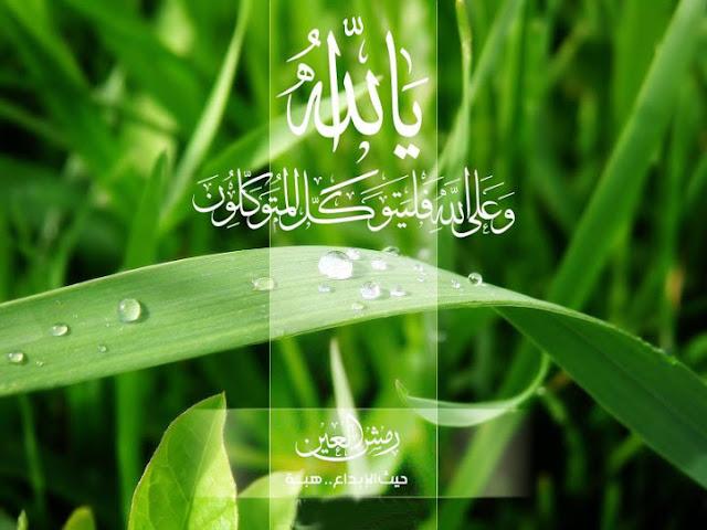 http://4.bp.blogspot.com/-C3U4YbaM0uQ/ULVLfwoOh_I/AAAAAAAABKA/32rB4i78tzw/s1600/Cara+mensyukuri+nikmat+Allah+swt.jpg