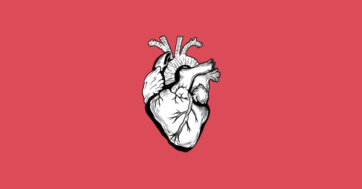 20 preguntas sobre Anatomía ¿Podrás responderlas correctamente?