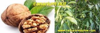 Herbalife use Walnuts