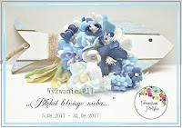 https://foamiranpolska.blogspot.com/2017/08/wyzwanie11-bekit-letniego-nieba.html