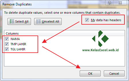 Cara Menghapus Data Ganda Pada Excel 3