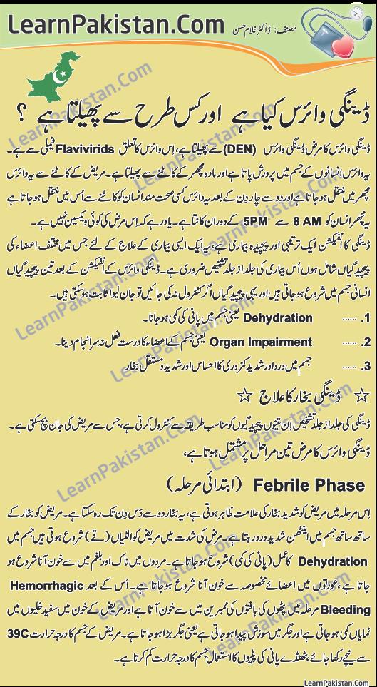 Essay On Dengue Fever