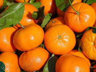 clementines fruit images