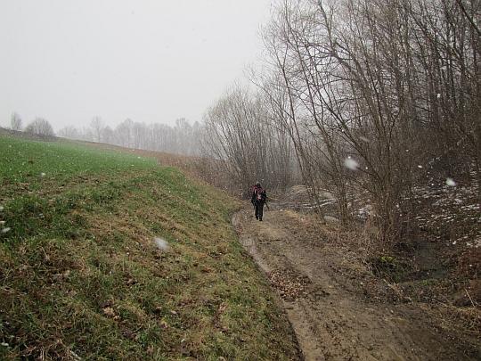 Po pokonaniu strumienia szlak wiedzie gruntową drogą