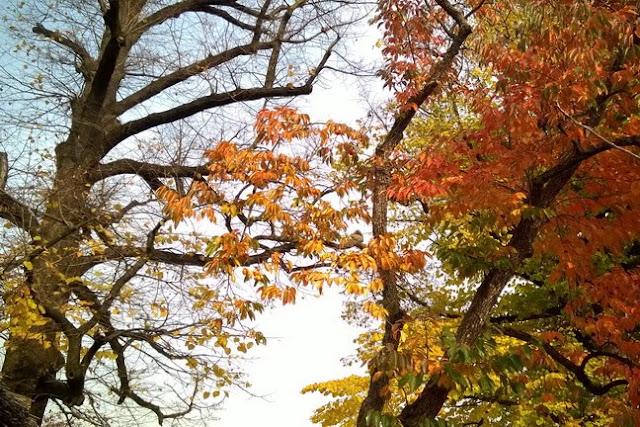 autunno e stare aria aperta
