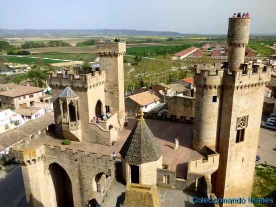 Vista aerea del Palacio de Olite - Castillo de Olite -