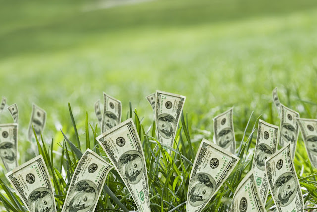 استثمار بمبلغ بسيط