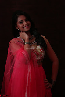 Geethanjali sizzles in Pink at Mixture Potlam Movie Audio Launch 014.JPG
