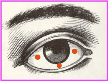 alerte votre corps vous parle n 4 les oreilles et les yeux le sanpaku. Black Bedroom Furniture Sets. Home Design Ideas