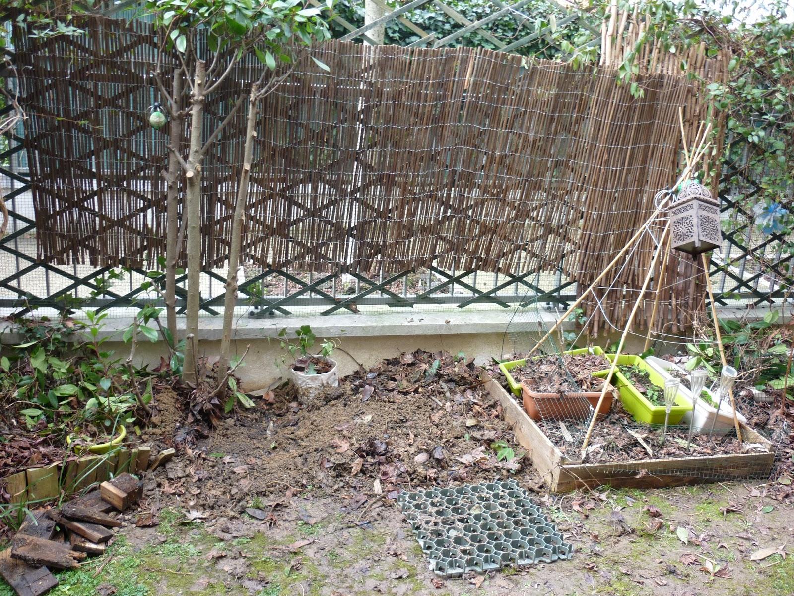 De brique et de brock jardin en janvier f vrier for Jardin janvier