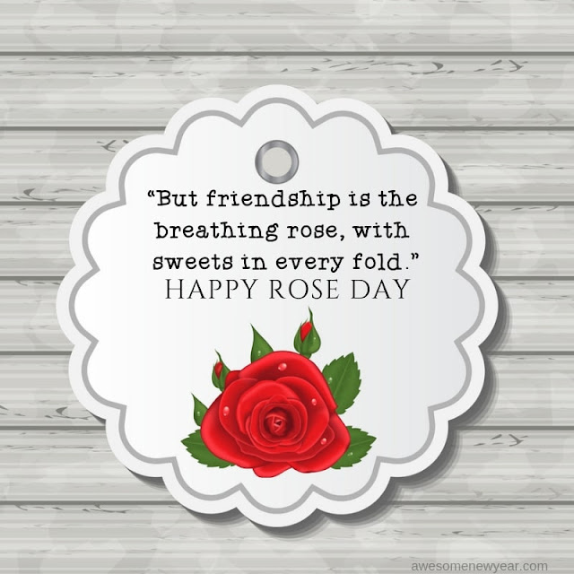 new Rose Day Quotes
