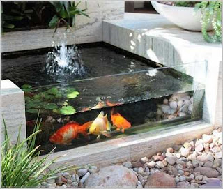 taman rumah minimalis dengan kolam ikan modern