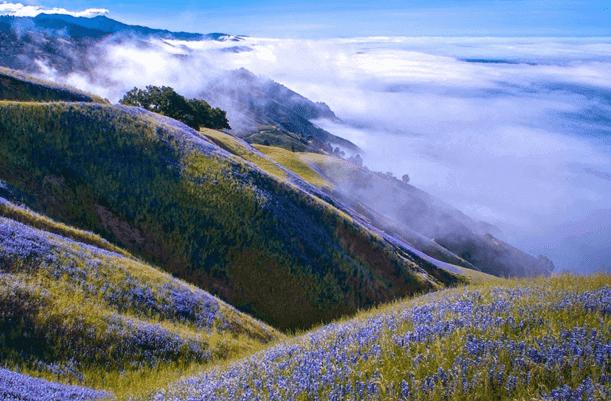 أروع صورة للطبيعة لسنة 2015
